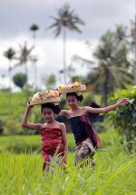 МАЛАЙЗИЯ - СИНГАПУР с остров Сентоса - ИНДОНЕЗИЯ с островите Бали и Ява! Вълнуващо пътешествие на границата между два океана. Ранни записвания!