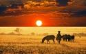 ЮАР – ЗИМБАБВЕ с водопадът Виктория! Рев на диви  животни и грохот на водопади! РАННО ЗАПИСВАНЕ ДО  07.03.2018!