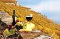 ФРАНЦИЯ – ПРОВАНС – по пътя на римляните и хубавото вино. За ценителите на различното...